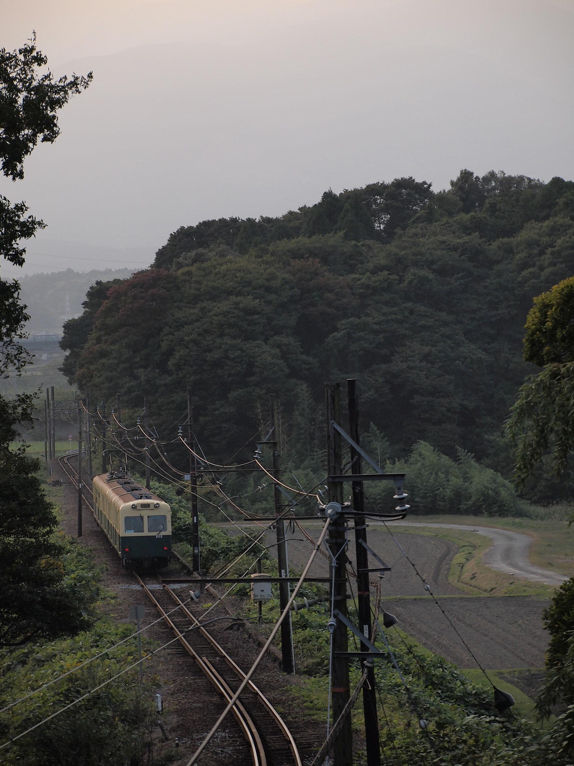 PA200797.jpg