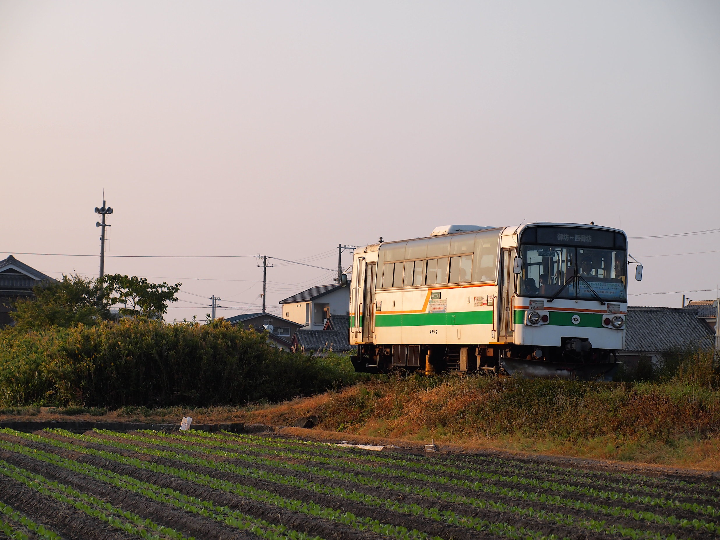 PA221306.jpg