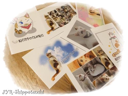 post_card.JPG