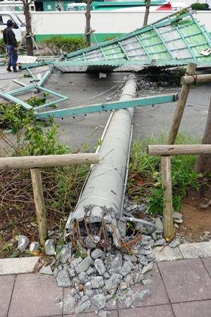 ミヤヒラ前倒壊電柱 P1060379