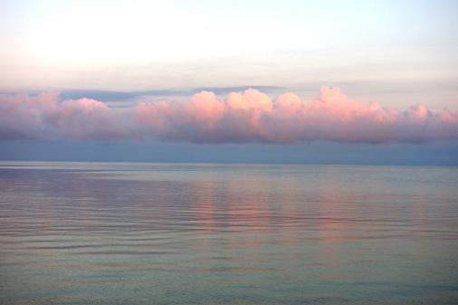 DSC09054 - ピンクい雲