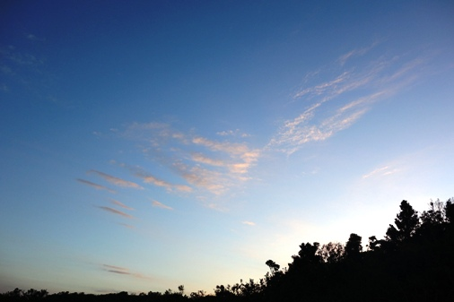 DSC09066 - 東の空