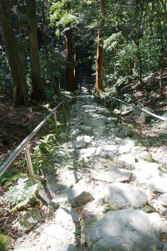 DSC00172 - 熊野磨崖仏