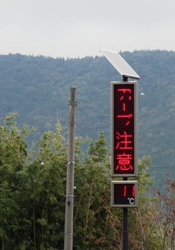 DSC00489 - 気温11℃