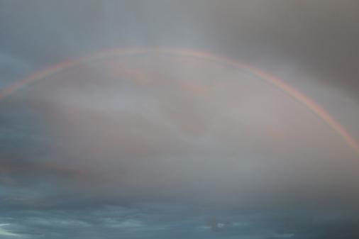 DSC01147 - 虹