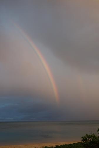 DSC01154 - 虹