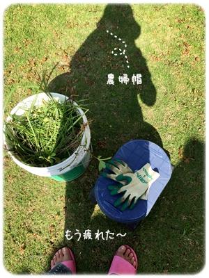 ファイル 2015-10-27 15 02 01