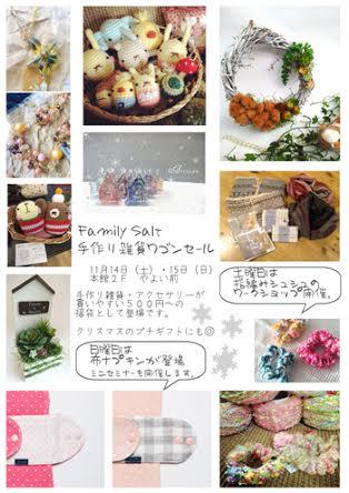 family Salt 151114