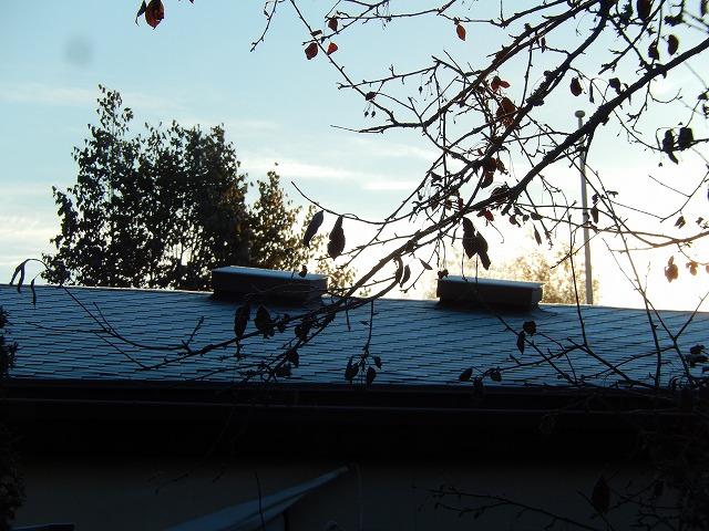 霜のおりた屋根