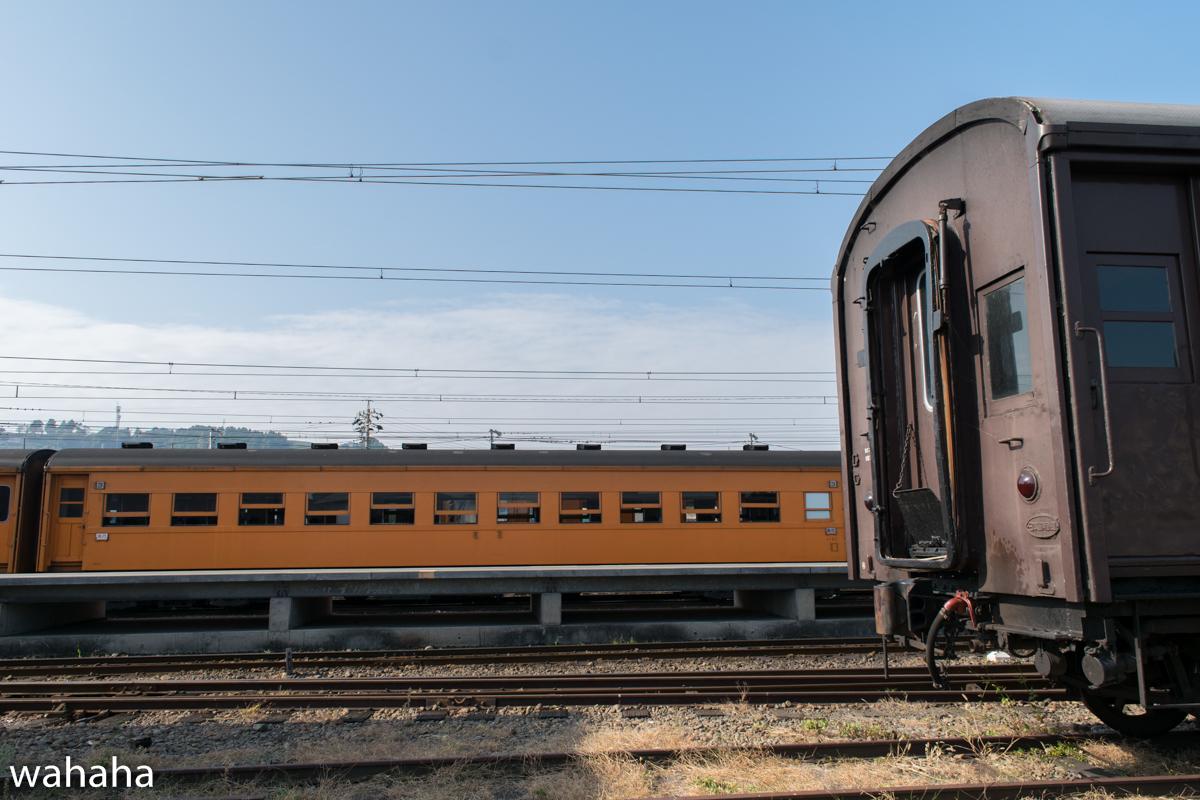 DSC_3672.jpg