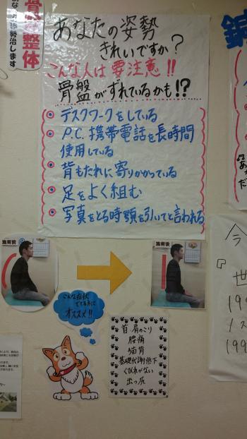 kyousenekosumi_convert_20150909191751.jpg