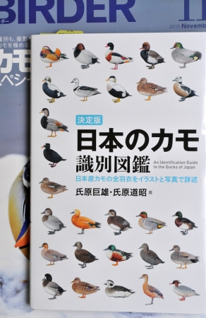 zukan-ducks