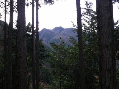 この角度の大岳山は初めて