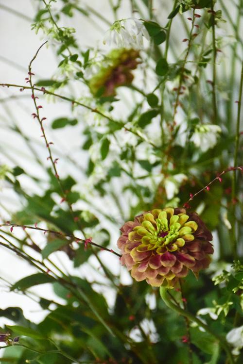 flower_15_9_13_2.jpg