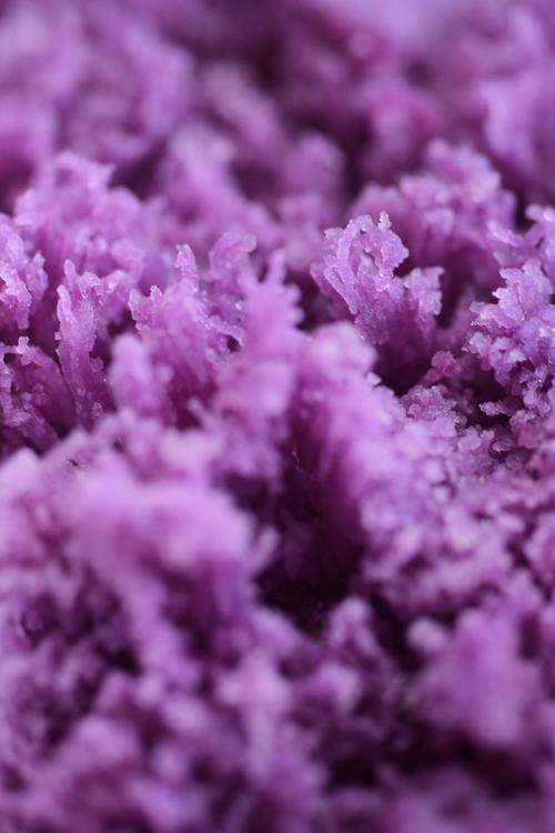 purplesweetroad_1.jpg