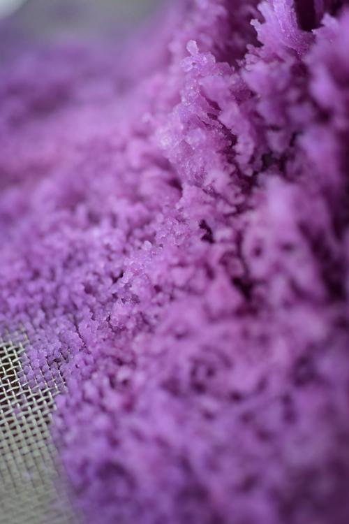 purplesweetroad_3.jpg