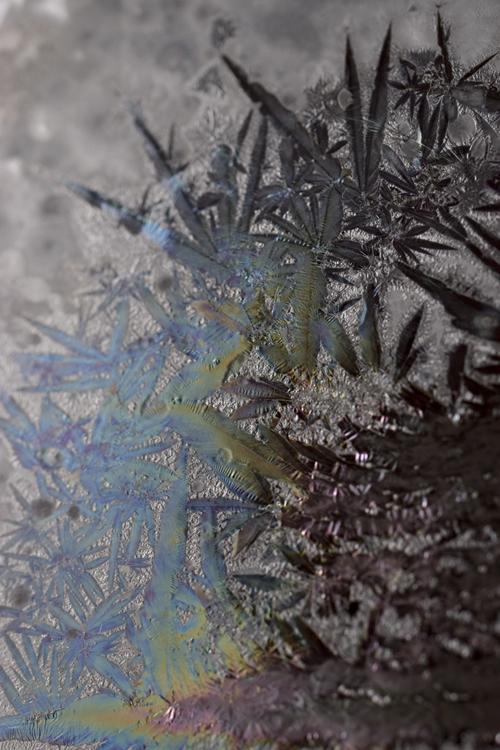 taku_crystal_1.jpg