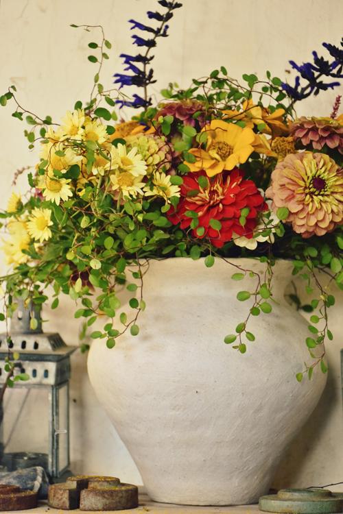 various_flowers_15_10_18_1.jpg