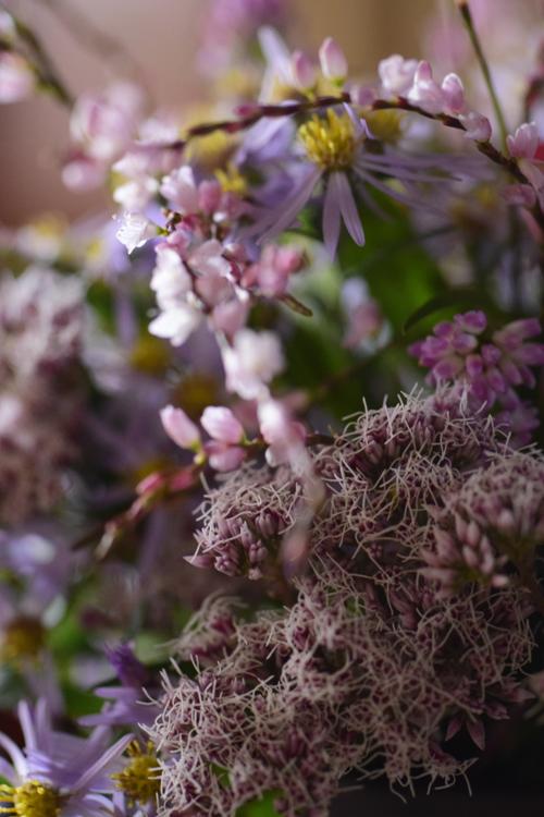 various_flowers_23.jpg