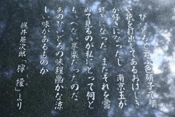 20150911梶井碑文