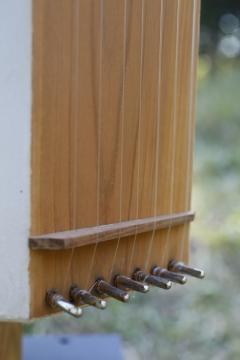 13中川浩佑ヤマカゼボッチの弦楽器2