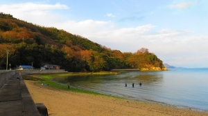 折古の浜 (1) - コピー