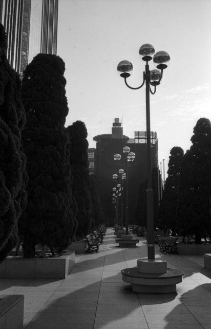 LeicaD3-01g