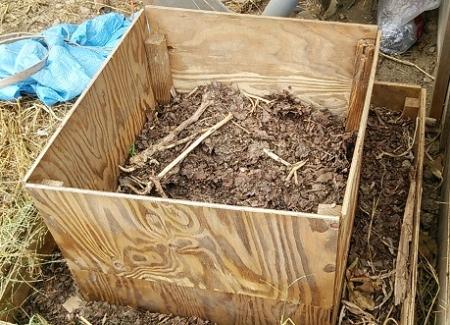 落ち葉堆肥のこり