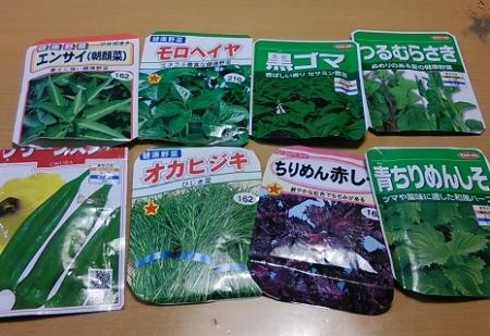 夏野菜の種2