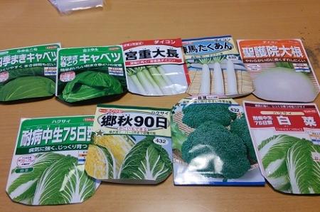 冬野菜の種