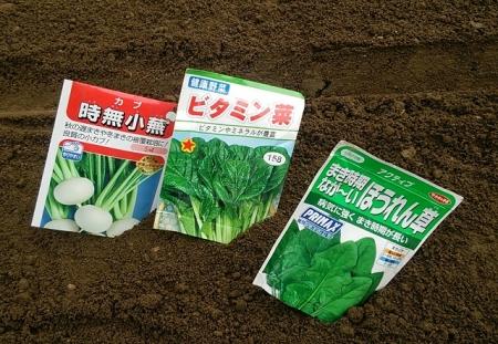 ほうれん草・ビタミン菜・小蕪
