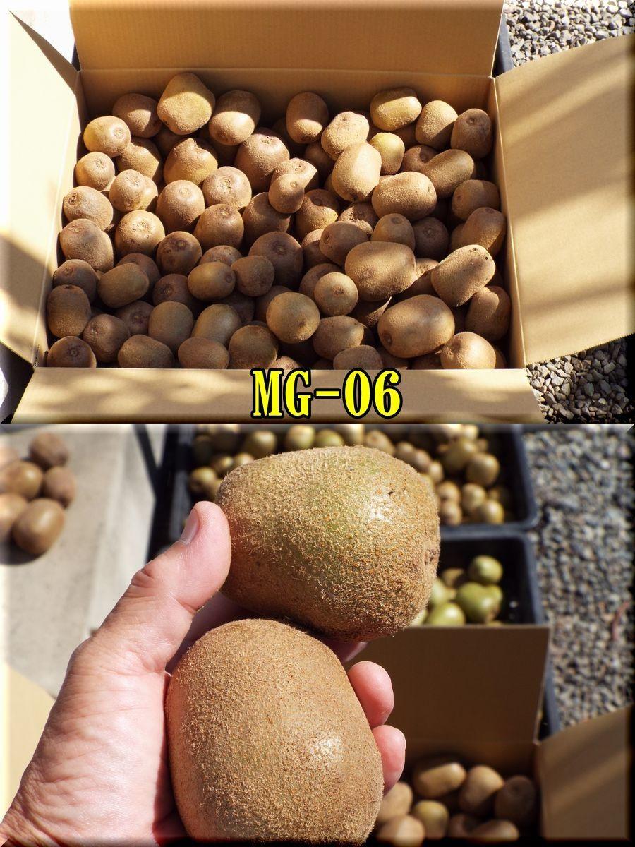 1MG151025_019.jpg