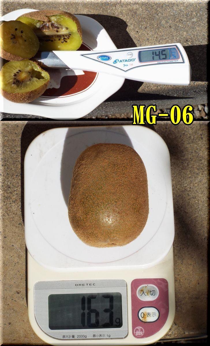 1MG151025_031.jpg