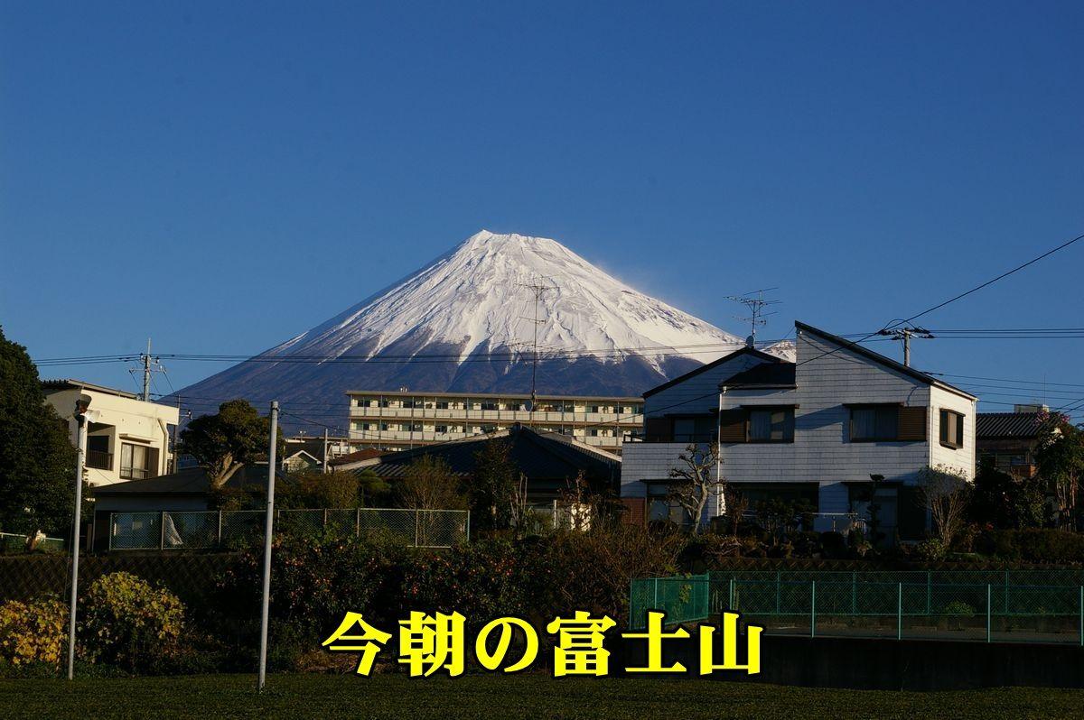 1fuji151127_001.jpg
