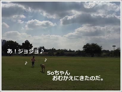 20151022-13.jpg