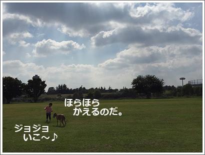 20151022-14.jpg