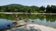 毛越寺、出島と池中立石
