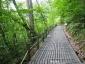 白神の森遊山道7・張出し木道