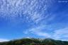 太郎平の秋の空1