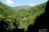 西山林道から鍋割山稜