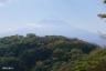 鍋割山稜から富士2
