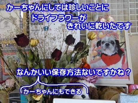 0914-08_20150914154509c8e.jpg