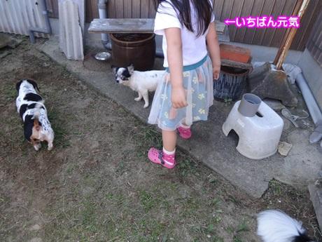 1008-04_2015100819550932c.jpg