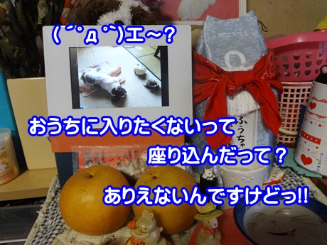 1009-04_20151009193940a7c.jpg