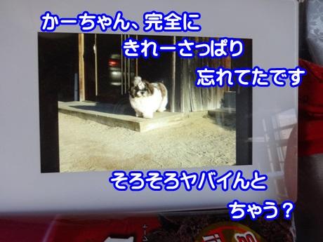 1025-01_201510251921086fb.jpg