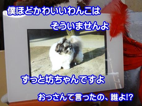 1102-03_20151102141244f56.jpg