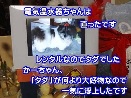 1109-05_201511091615151fa.jpg