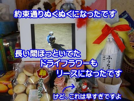 1112-04_2015111219250766f.jpg