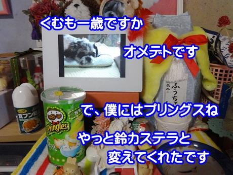 1124-07_201511241937537db.jpg