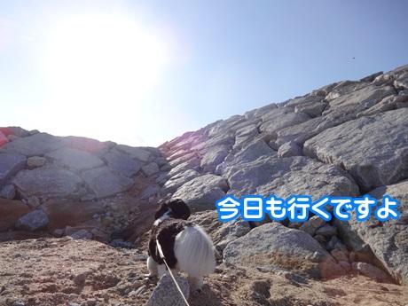 1205-03_20151205150400c15.jpg